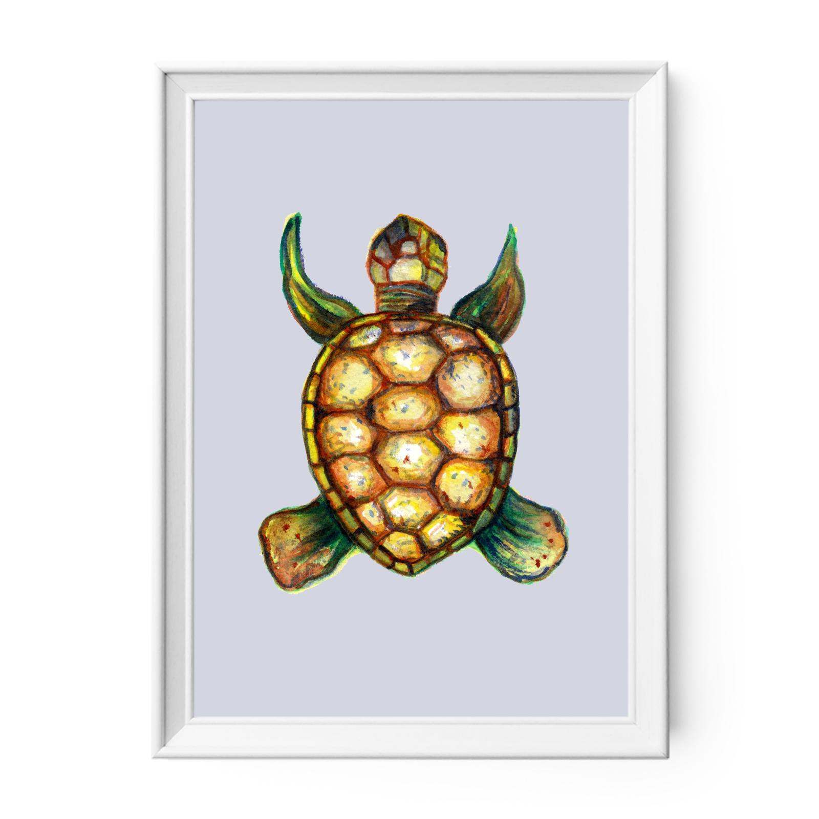 Sea Turtle Art